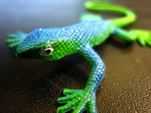 Rubber Lizard by pixeldrops on Flickr